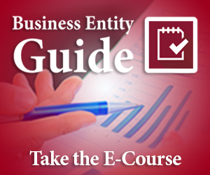 Business Entity Guide